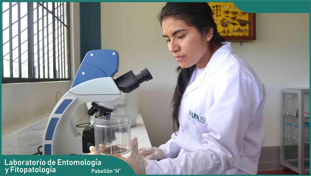Carrera de Ingeniería Agronómica - Laboratorio de Entomología y Fitopatología
